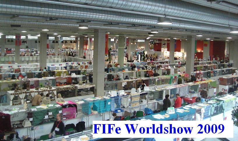 Worldshow St. Gallen