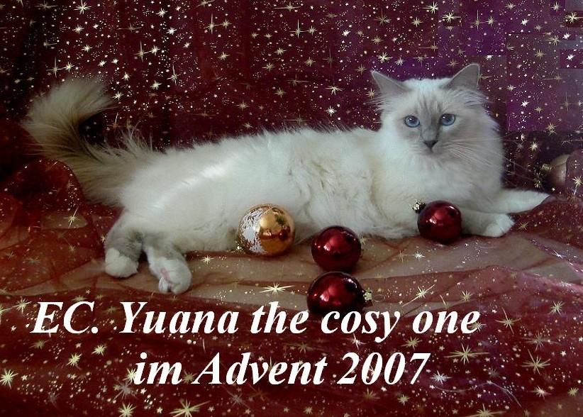 Yuana Advent 2007