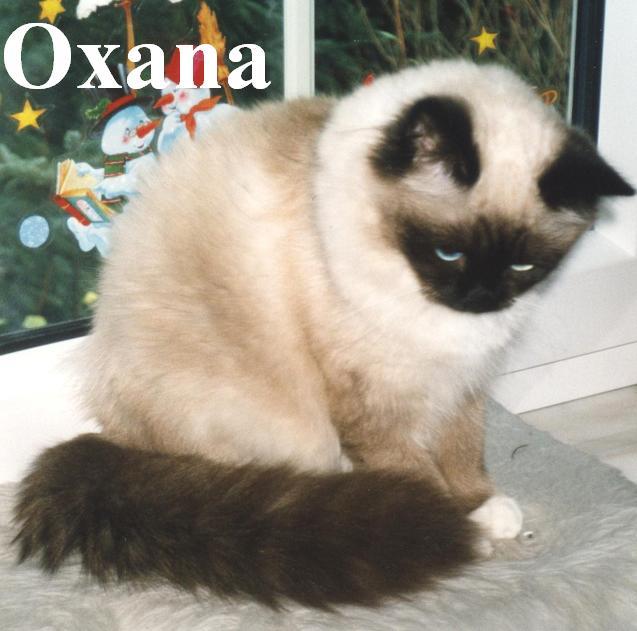 Oxana erwachsen
